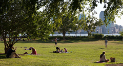 Our Five Favorite NYC Parks and Why They're a Big Deal for Surrounding Real Estate